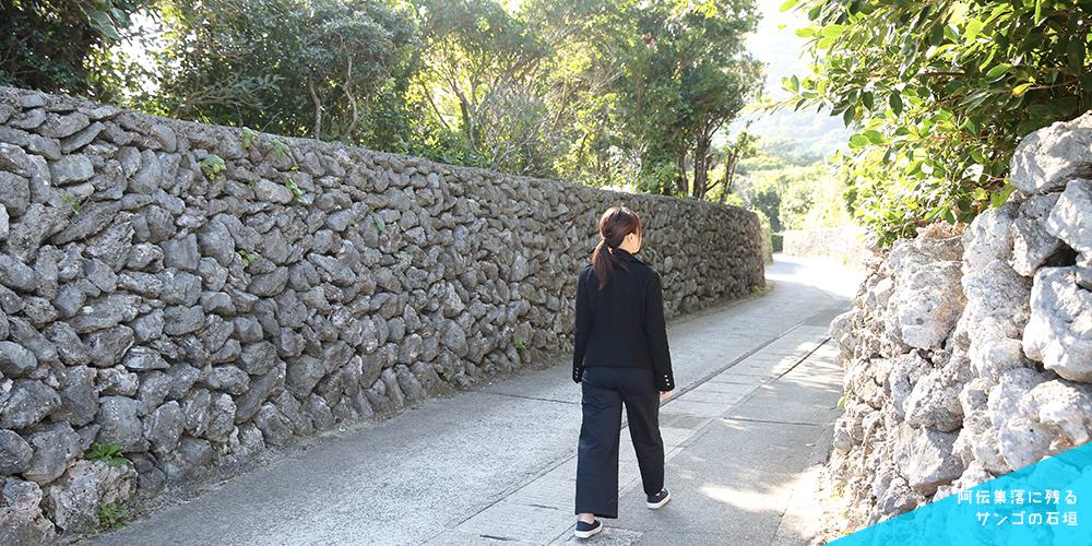 阿伝集落に残るサンゴの石垣
