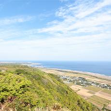 ガジュマルとビーチ