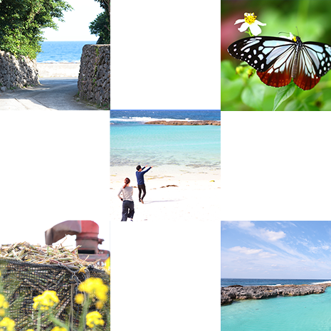 農業体験以外にも喜界島を満喫できる