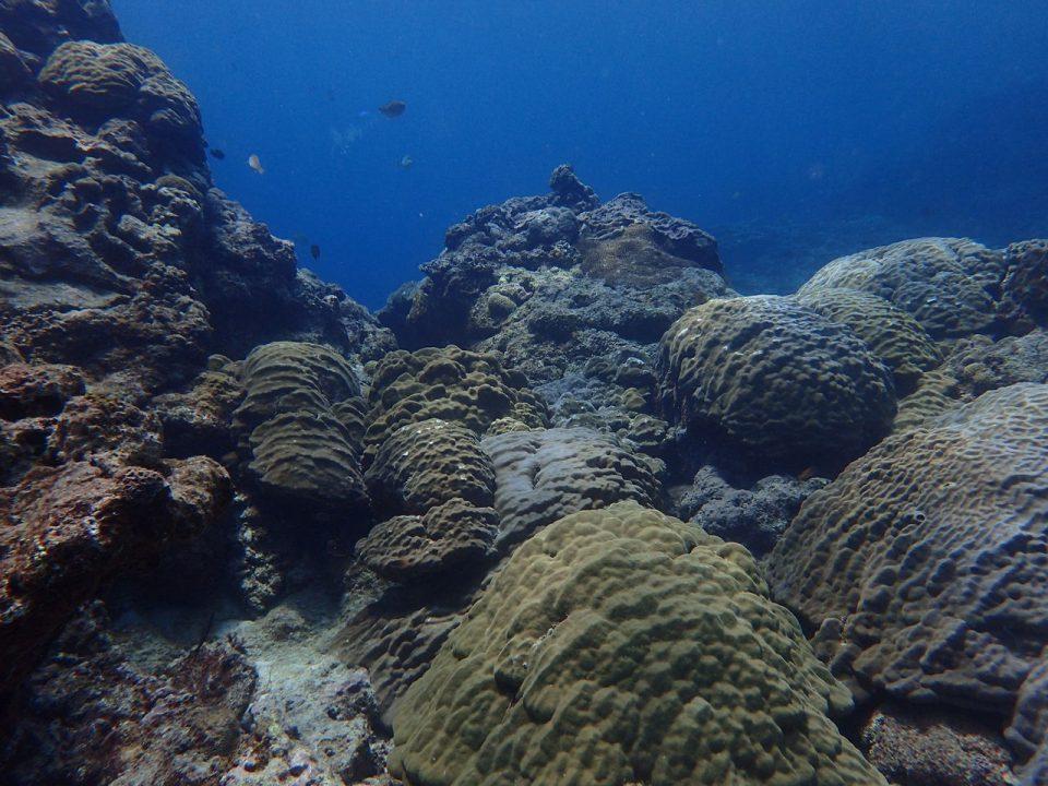 喜界島の海001